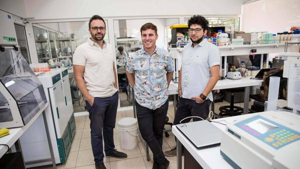 NotMayo: a maionese desenvolvida por inteligência artificial