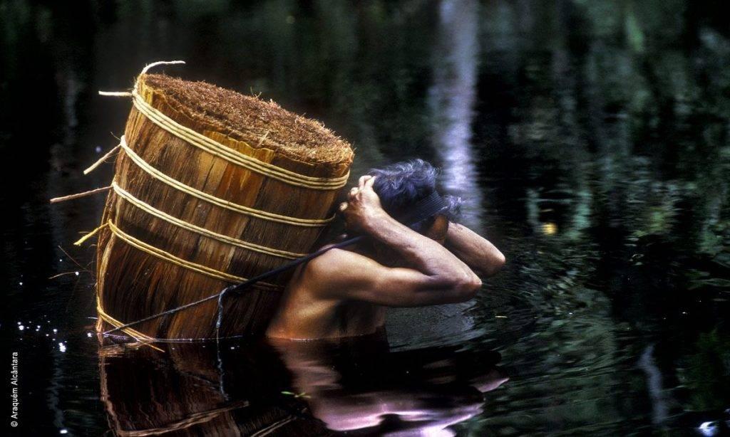 100% Amazônia: uma empresa de sustentabilidade