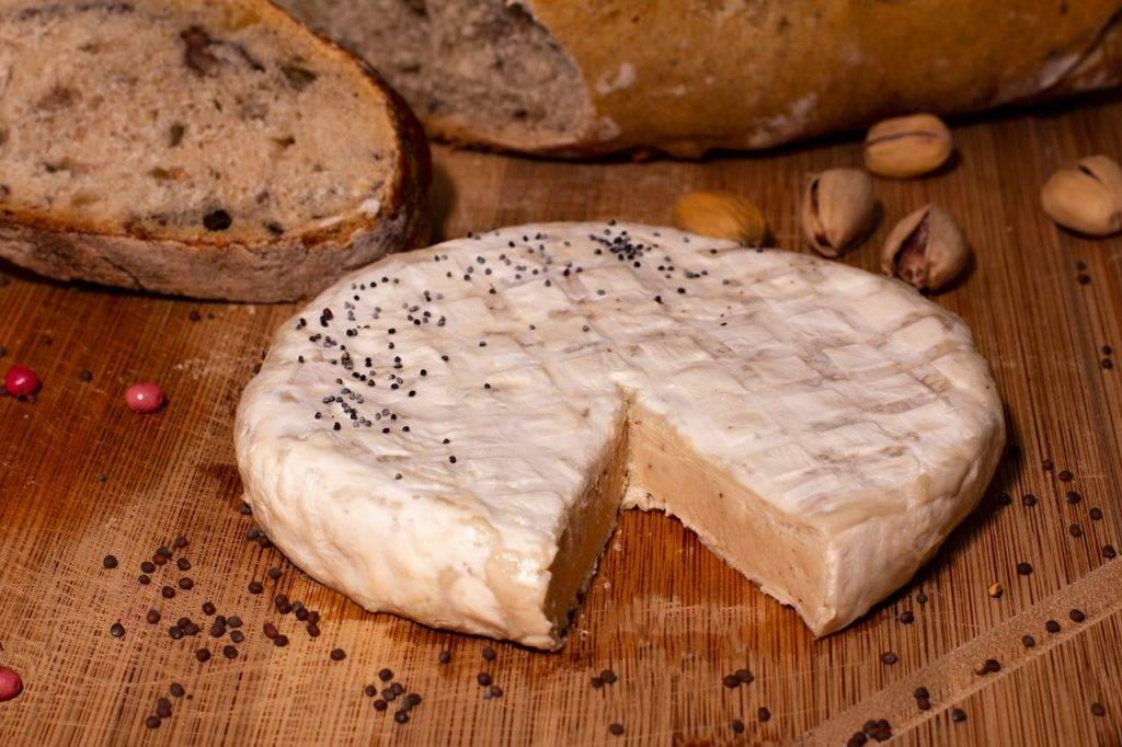Queijo vegano que representa um dos queijo que será feito na oficina de queijos veganos da ivens dias branco em Fortaleza